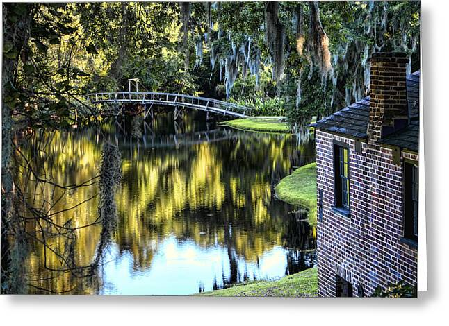 Greeting Card featuring the photograph Low Country Impressions by Jim Hill