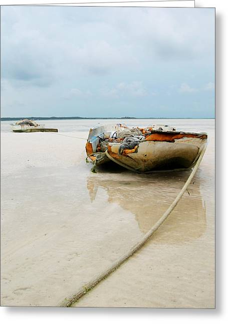 Low Tide 3 Greeting Card by Sarah-jane Laubscher