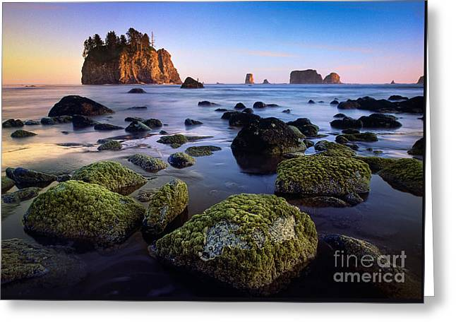 Low Tide At Second Beach Greeting Card by Inge Johnsson