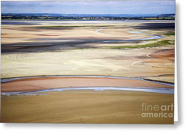 Low Tide In Brittany Greeting Card by Elena Elisseeva