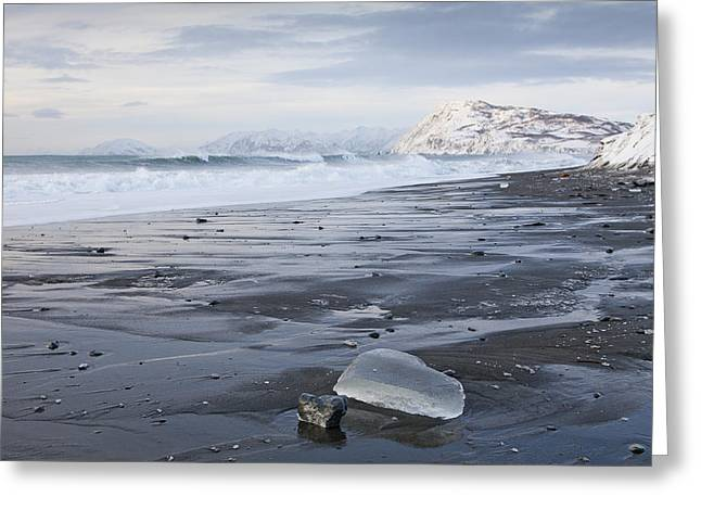 Low Tide In The Winter Greeting Card by Tim Grams