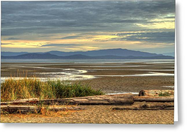 Low Tide Greeting Card by Randy Hall