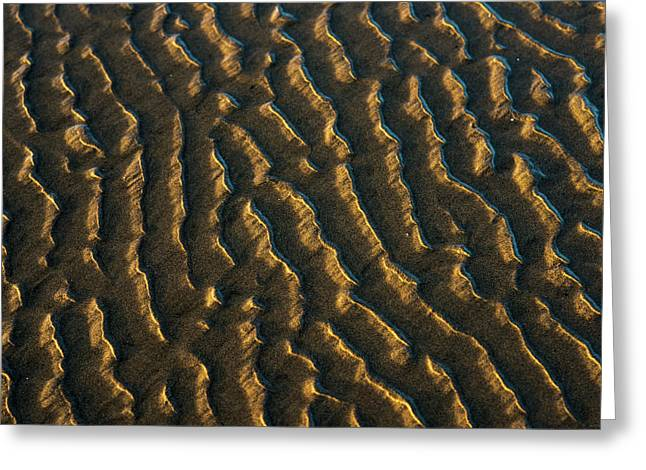 Low Tide Reveals Patterns On The Beach Greeting Card by Robert L. Potts