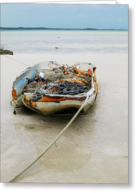 Low Tide Greeting Card by Sarah-jane Laubscher