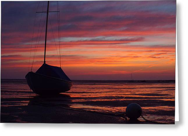 Sunrise At Low Tide Greeting Card by Dianne Cowen