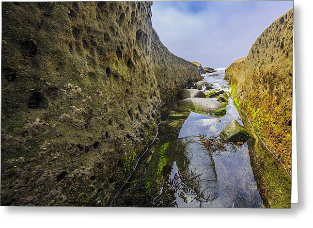 Low Tide Trough 1 Greeting Card