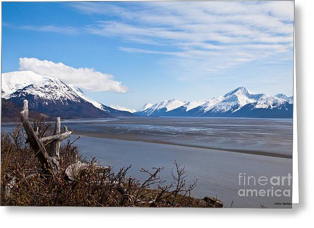 Low Tide Turnagain Arm Greeting Card by Chris Heitstuman
