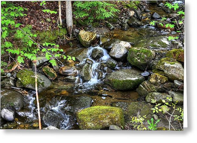 Lowell Mountain Stream Greeting Card by John Nielsen