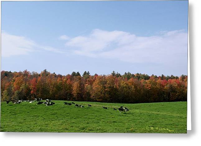 Lowell Vermont Greeting Card