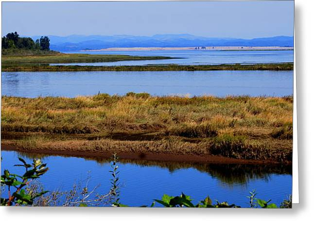 Lower Columbia Panorama I Greeting Card by Mamie Gunning