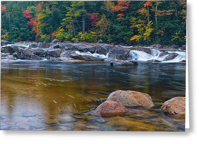 Lower Falls On The Swift River Greeting Card by Jeff Sinon