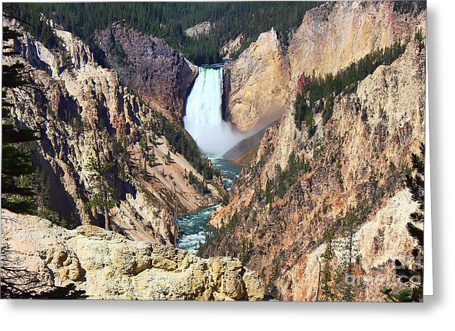 Lower Falls Yellowstone Greeting Card by Teresa Zieba