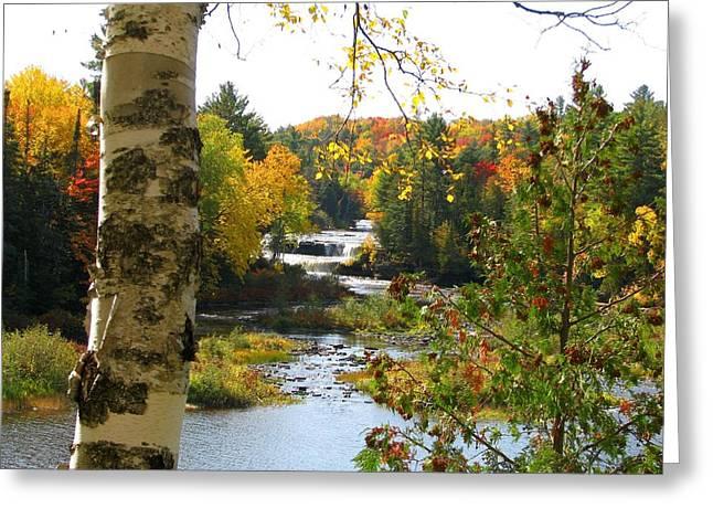 Lower Tahquamenon Falls In October No 1 Greeting Card