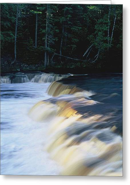 Greeting Card featuring the photograph Lower Tahquamenon Falls by Randy Pollard