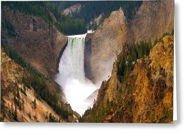 Greeting Card featuring the photograph Lower Yellowstone Falls by Eric Tressler