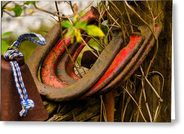 Greeting Card featuring the photograph Lucky Horseshoes by Jordan Blackstone