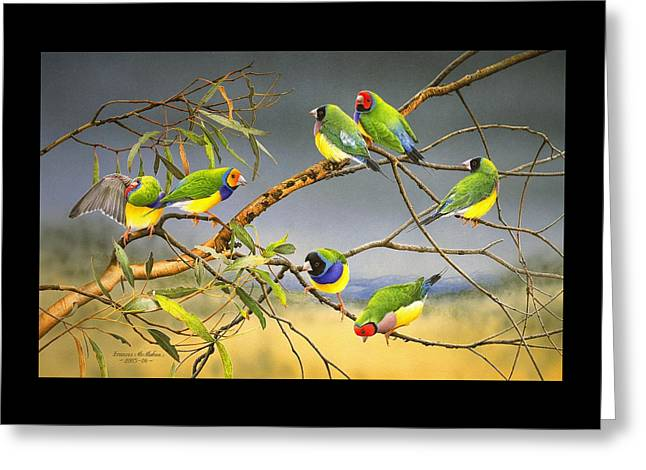 Lucky Seven - Gouldian Finches Greeting Card by Frances McMahon