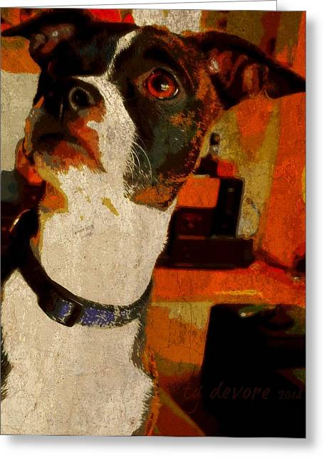 Lucy 7 Greeting Card by Tg Devore