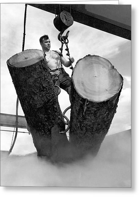 Lumber Mill Worker Greeting Card by Underwood Archives