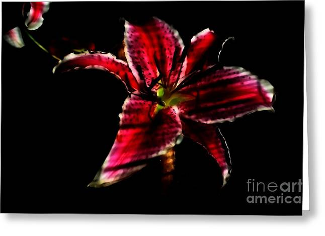 Greeting Card featuring the photograph Luminet Darkness by Jessica Shelton