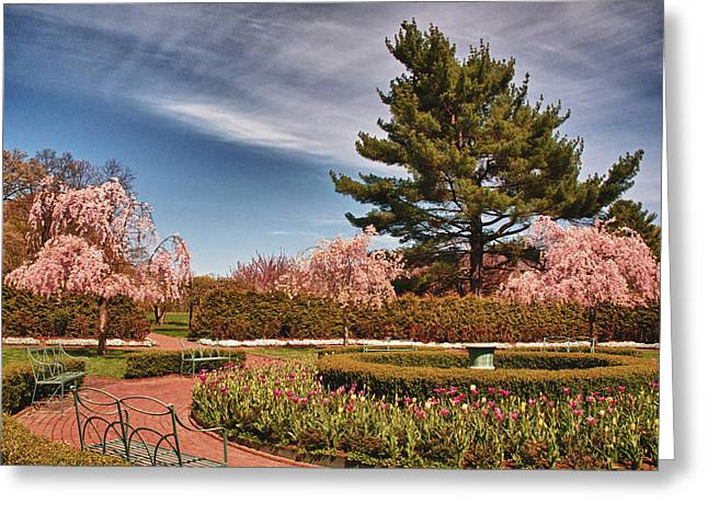 Luminous Colors Of Spring Greeting Card