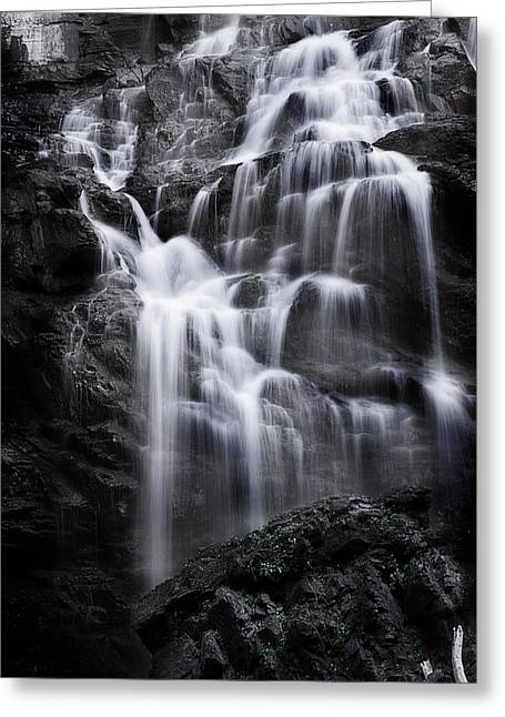 Luminous Waters Greeting Card by Janie Johnson