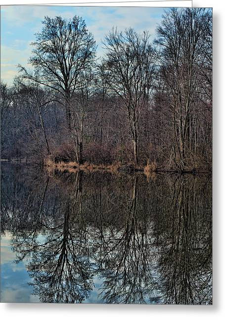 Lums Pond Tree Reflections Greeting Card by Donna Harding