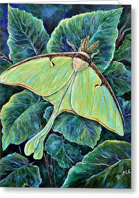 Luna Moth Greeting Card by Gail Butler