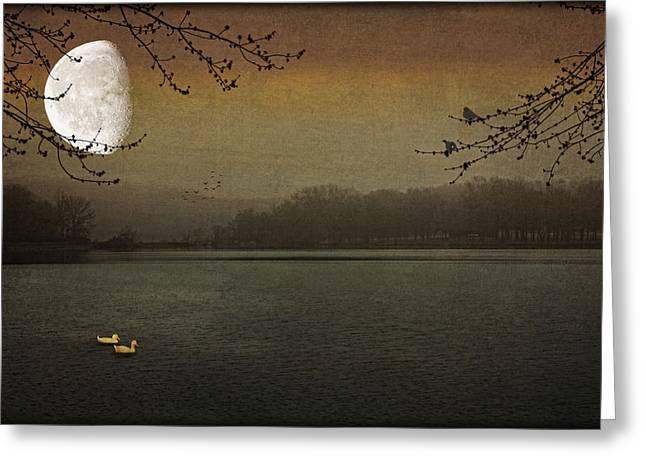 Lunar Lake Greeting Card by Tom York Images