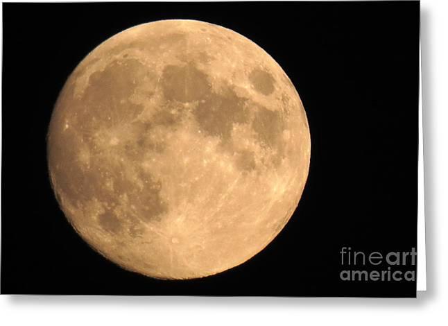 Lunar Mood Greeting Card by Mary Mikawoz