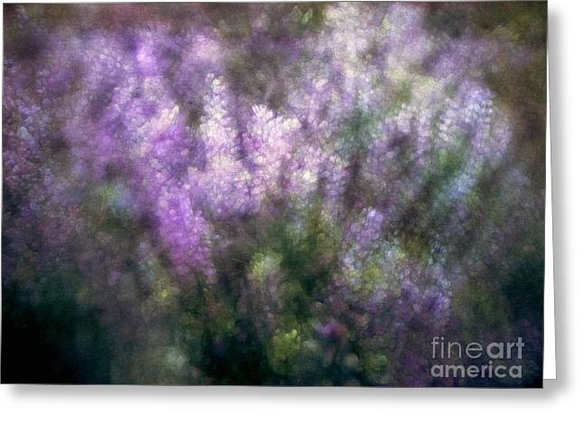 Lupine By The River  Greeting Card by Kevin Felts