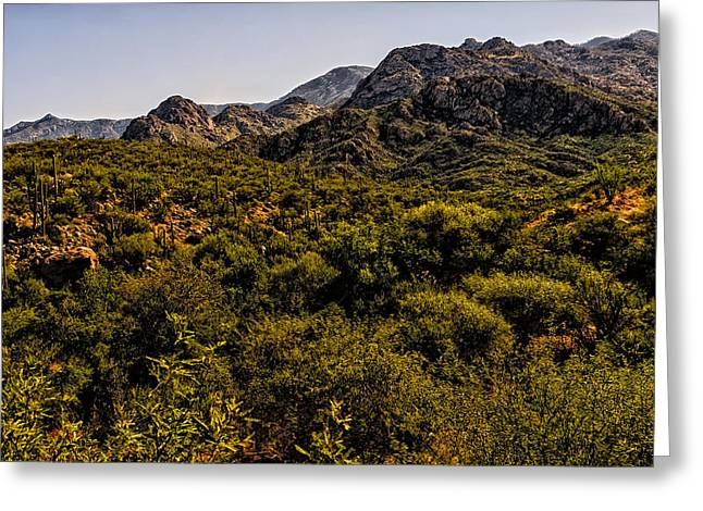 Greeting Card featuring the photograph Lush Foothills No.1 by Mark Myhaver