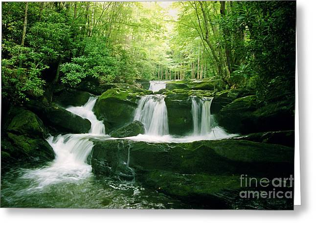 Greeting Card featuring the photograph Lynn Camp Cascades by Teri D Brown
