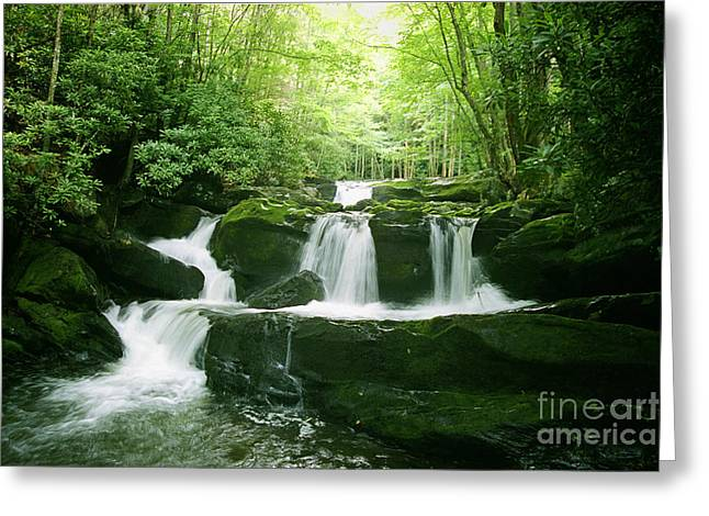 Lynn Camp Prong Falls Greeting Card