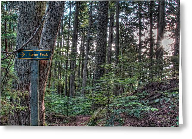 Lynn Peak This Way Greeting Card by James Wheeler