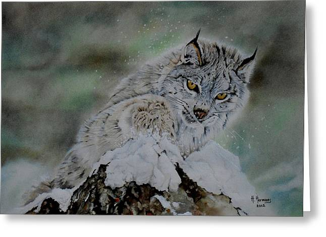Lynx Playing With Snow Greeting Card by Hendrik Hermans