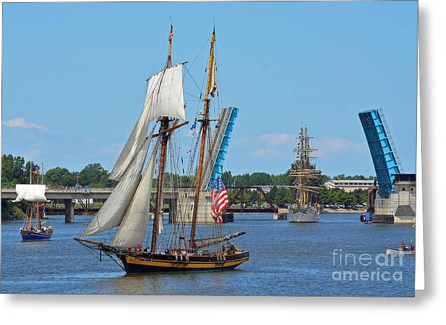 Lynx Topsail Schooner Greeting Card by Rodney Campbell