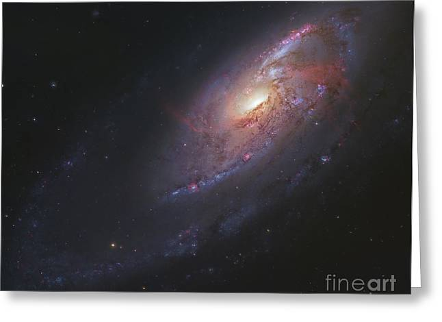 M106, Spiral Galaxy In Canes Venatici Greeting Card by Robert Gendler