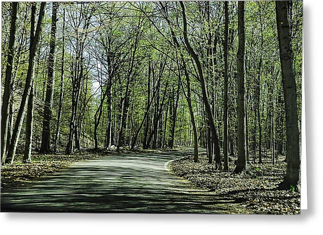 M119 Tunnel Of Trees Michigan Greeting Card