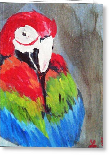 Macaw 2 Greeting Card