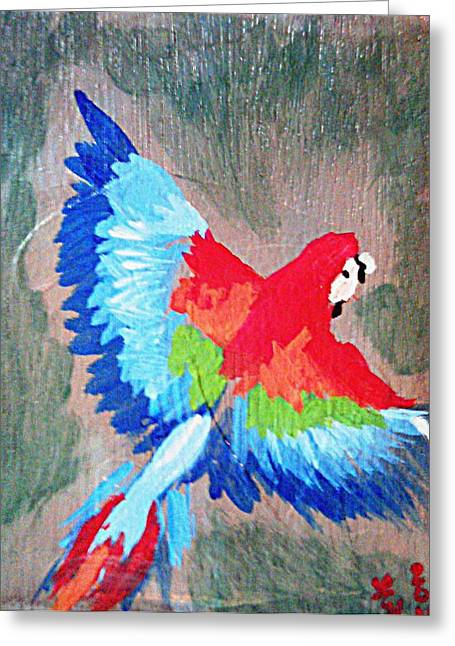 Macaw In Flight Greeting Card