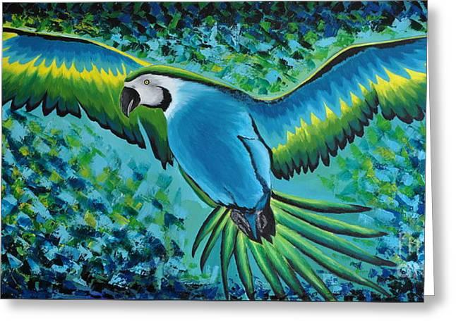 Macaw In Flight Greeting Card
