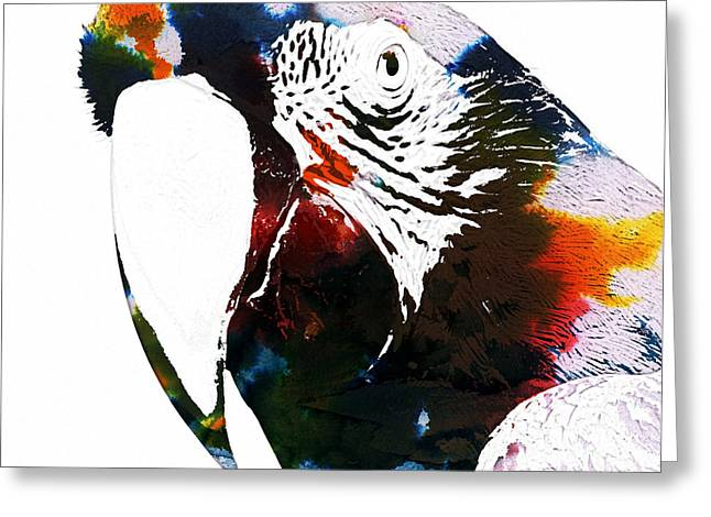 Macaw In Watercolor Greeting Card