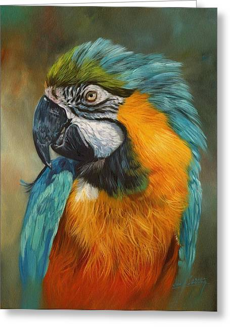Macaw Parrot Greeting Card by David Stribbling