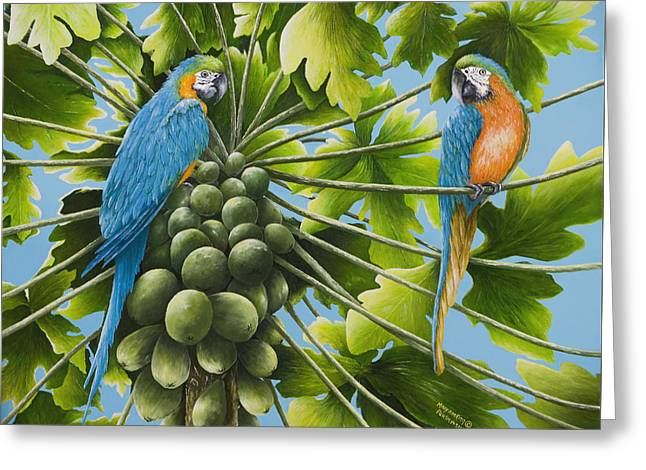 Macaw Parrots In Papaya Tree Greeting Card