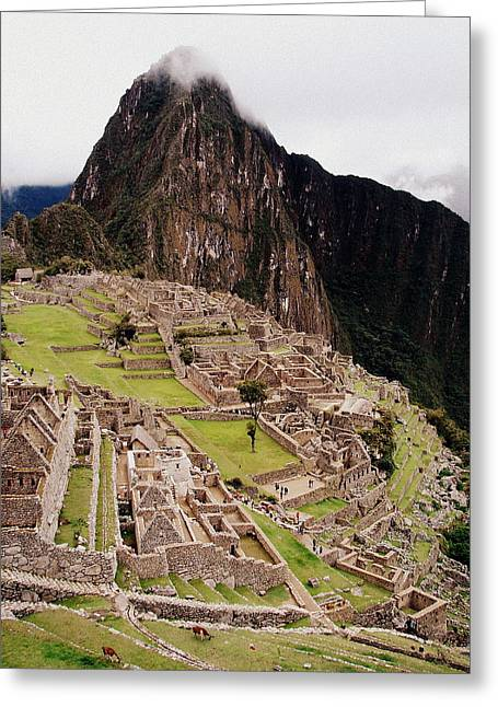 Machu Picchu Greeting Card by Ramona Johnston