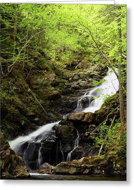 Macintosh Brook Waterfalls In Cape Greeting Card