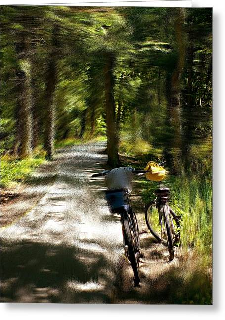 Mackinac Island Woods Greeting Card
