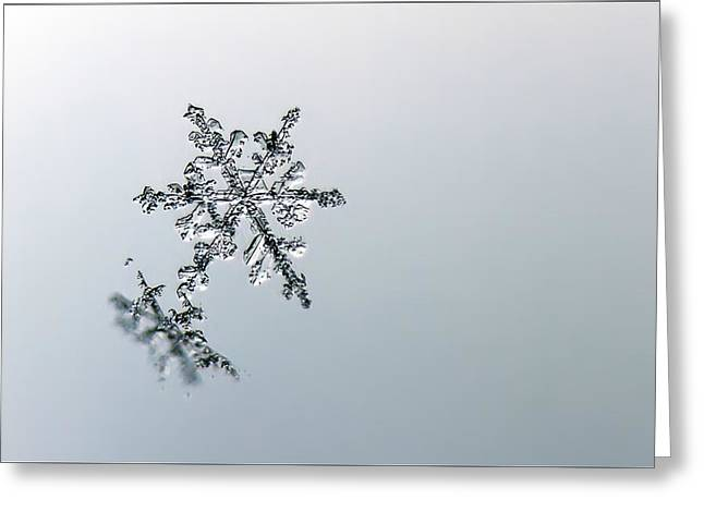 Macro Snowflake Greeting Card