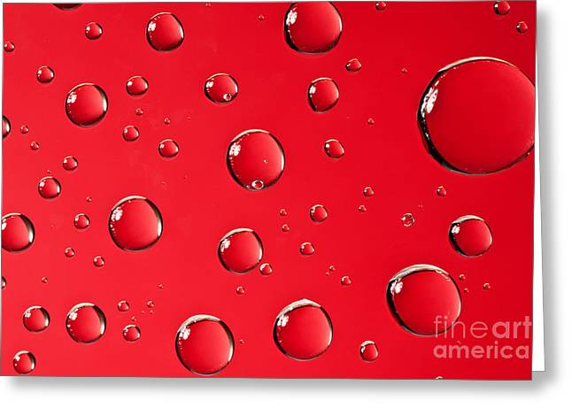 Macro Water Drop On Red Greeting Card by Sharon Dominick